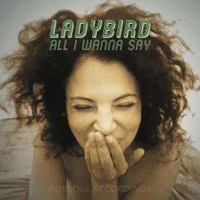 ladybird_artwork.png