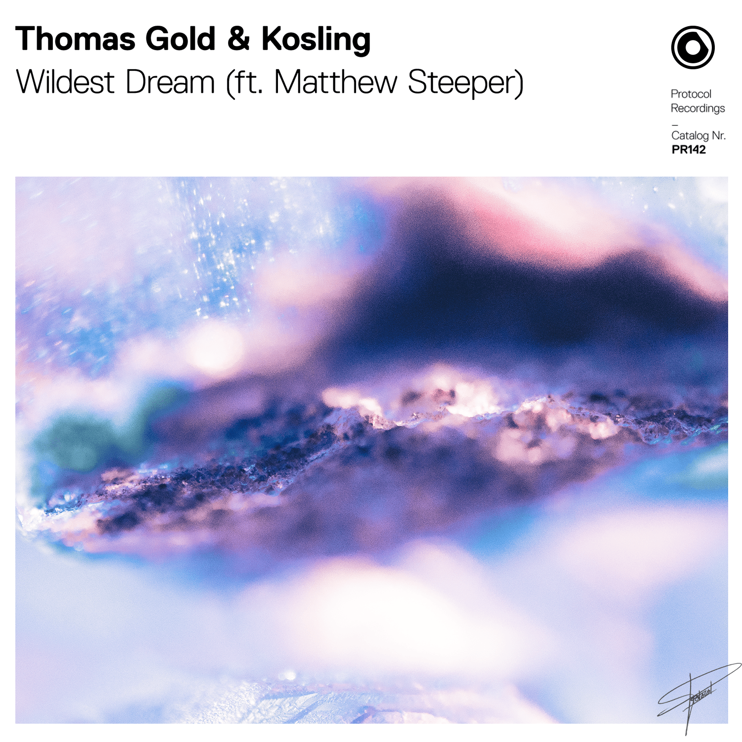 cover_thomas_gold_kosling_-_wildest_dream_ft._matthew_steeper.png